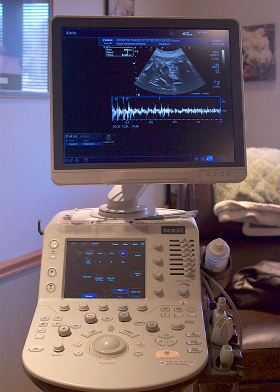 Xario 100 Platinum Ultrasound Machine